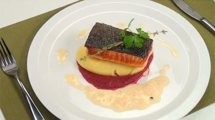 Salmon fillets, mashed potatoes seasoned with wasabi, beet purée, shallot sauce